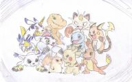 Digimon Vs Pokemon 7 Anime Wallpaper