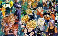 Dragon Ball Z Dragon 12 Anime Wallpaper