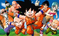Dragon Ball Z Dragon 13 Wide Wallpaper