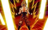 Dragon Ball Z Dragon 14 Wide Wallpaper