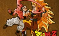 Dragon Ball Z Dragon 31 Background Wallpaper