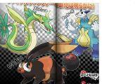 Pokemon Xy Zigzagoon 19 Anime Wallpaper