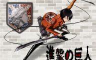 Shingeki No Kyojin Ackerman  30 Desktop Background