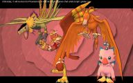Digimon Biyomon 24 Widescreen Wallpaper