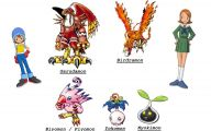 Digimon Biyomon 3 Cool Wallpaper