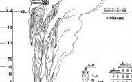 Shingeki No Kyojin Beast Titan  54 Cool Wallpaper