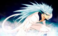 Grimmjow Jeagerjaques Wallpaper 2 Wide Wallpaper