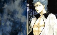 Grimmjow Jeagerjaques Wallpaper 40 Background Wallpaper