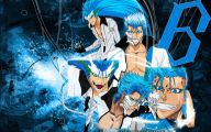 Grimmjow Jeagerjaques Wallpaper Hd 18 Widescreen Wallpaper