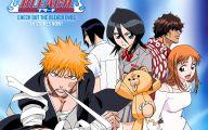 Bleach Anime 19 Wide Wallpaper