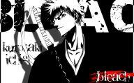Bleach Anime 43 Widescreen Wallpaper