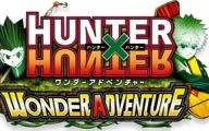 Hunter X Hunter Adventure 40 Desktop Wallpaper