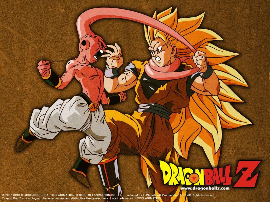 Dragon Ball Z Dragon 31 Background Wallpaper