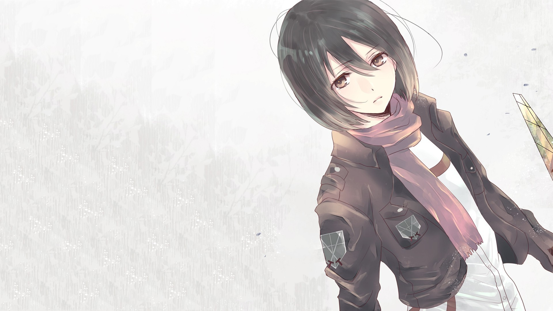Mikasa Ackerman 25 Desktop Background
